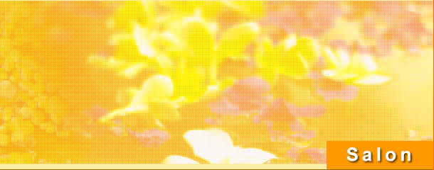 豊田市 美容室 カット パーマ ヘアスタイル マッサージ HAIRROOMmaterials マテリアル Menu〜プライス〜