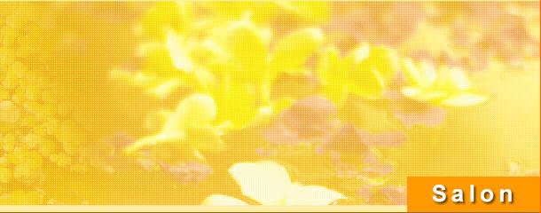 豊田市 美容室 カット パーマ ヘアスタイル マッサージ HAIRROOMmaterials マテリアル 店舗のご案内〜アクセスマップ〜
